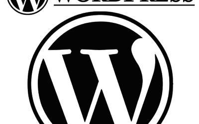 Waarom ik als Online Business Manager WordPress gebruik?