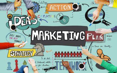 Is de Online Business Manager ook de Marketing Manager?